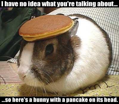 091911_Bunny-with-a-pancake_R1.jpg