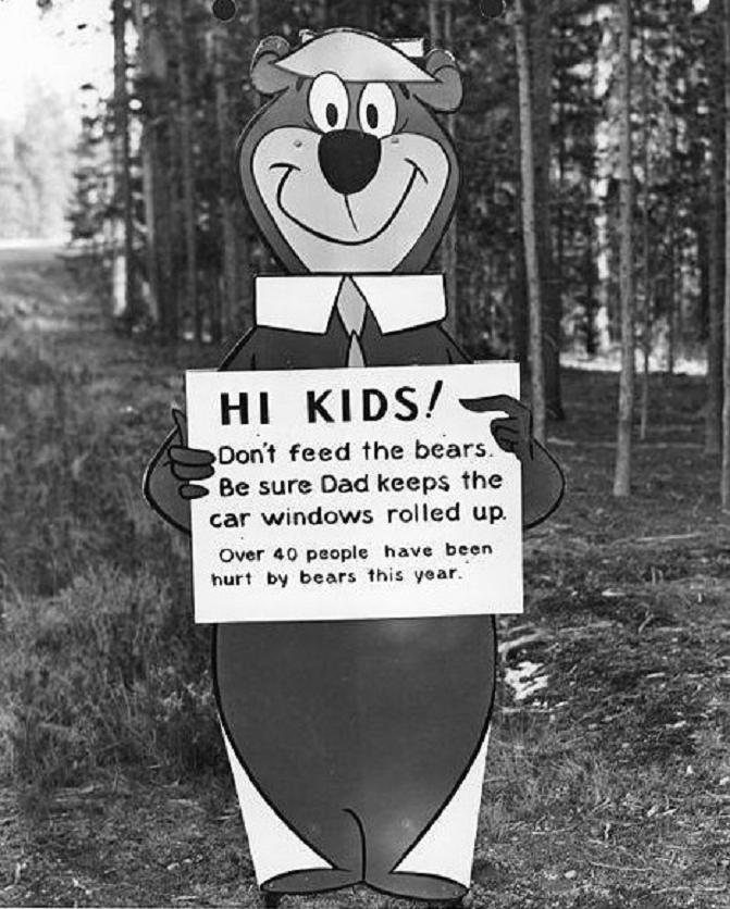 1963 bear Yellowstone sign.jpg