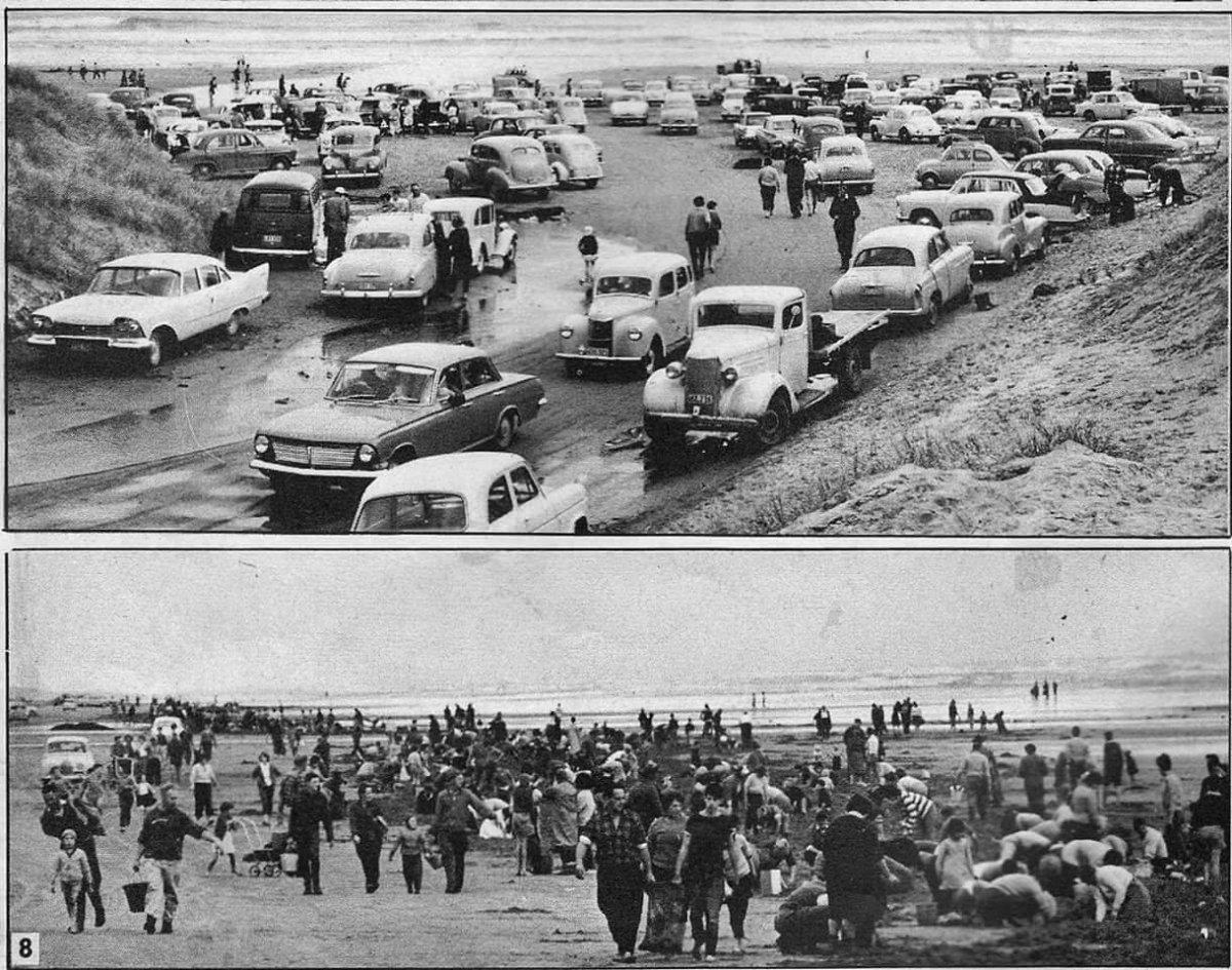 1963 Chases Gorge Baylys beach nr Dargaville Toheroa search.jpg