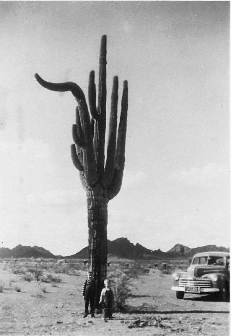 3 rt66  1948.jpg