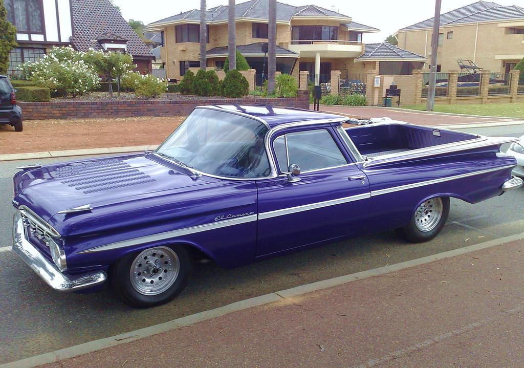 59 EL Purple (1).jpg