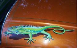 61 lesabre galloway iguana top.jpg