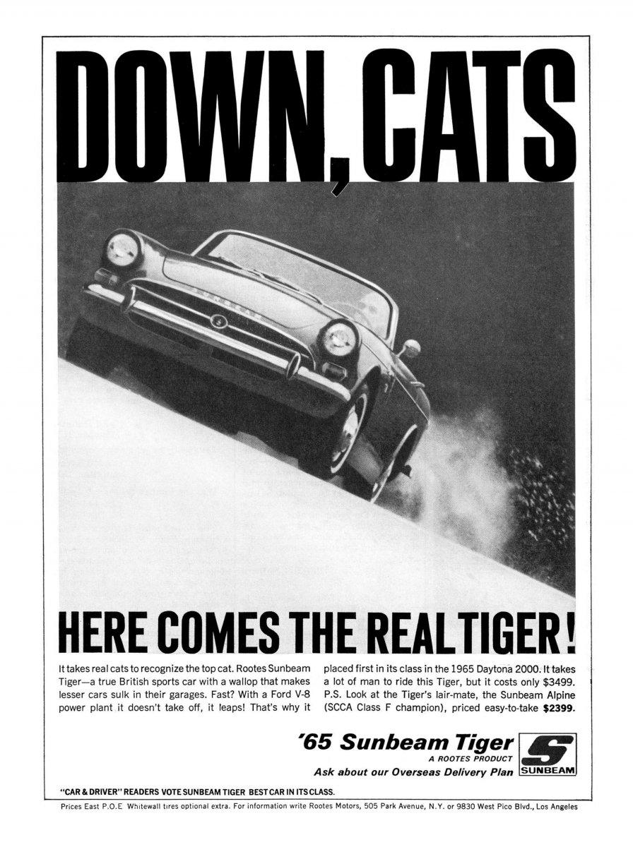 65RotsAd_Tiger_DownCats_01.jpg