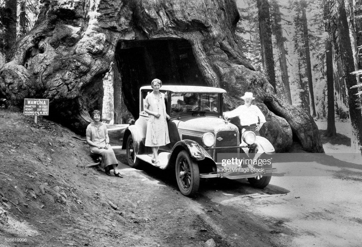 82 Family poses at the Wawona Tree in Yosemite, ca. 1926..jpg
