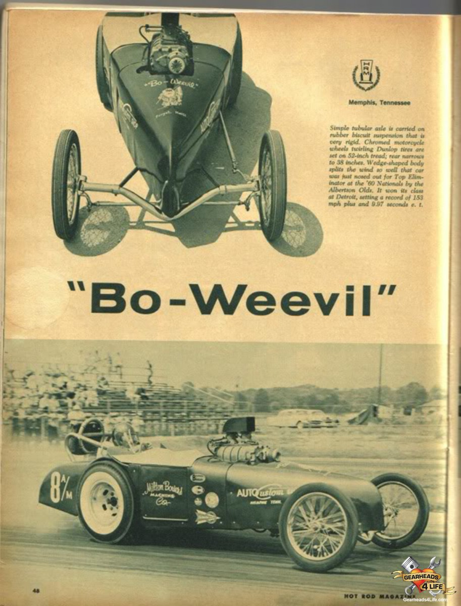 Bo Weevil.jpg