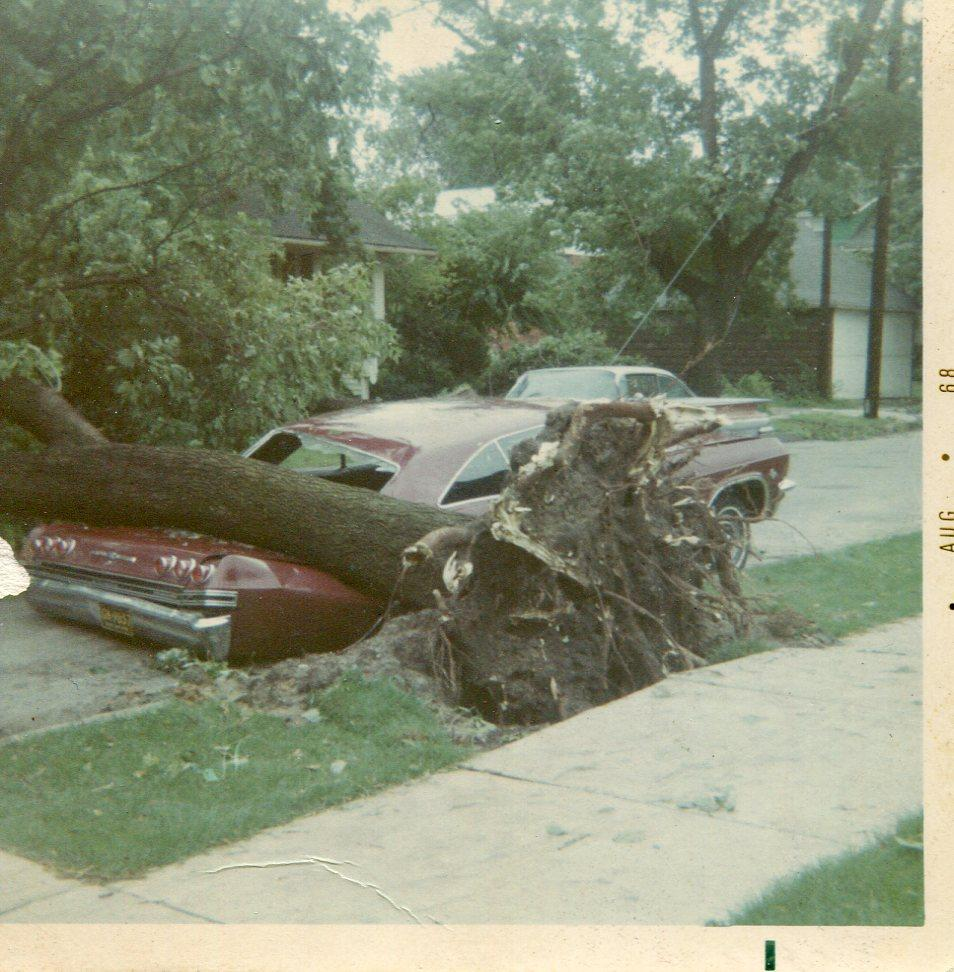 Chevrolet after the storm.jpg