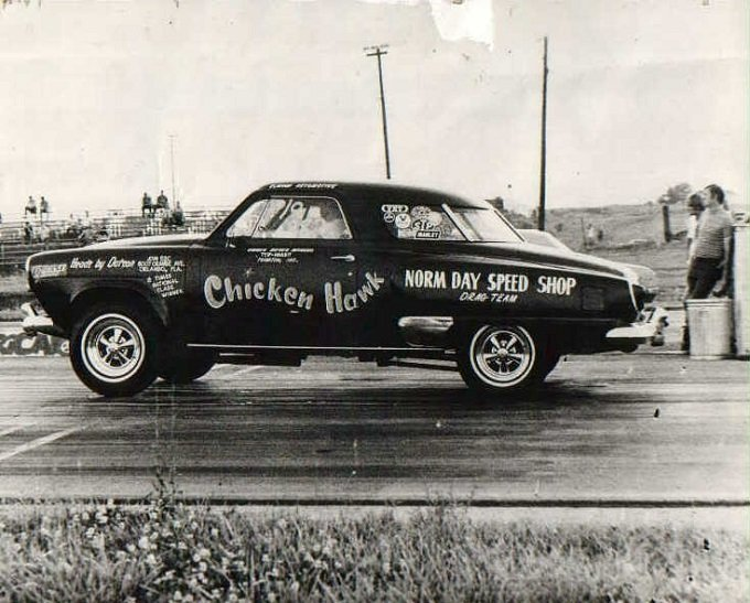 chicken hawk.jpg