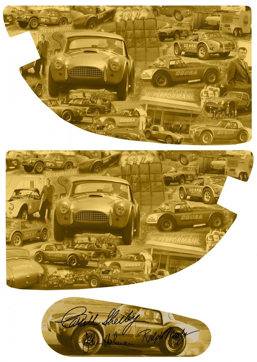 cobra panels2.jpg
