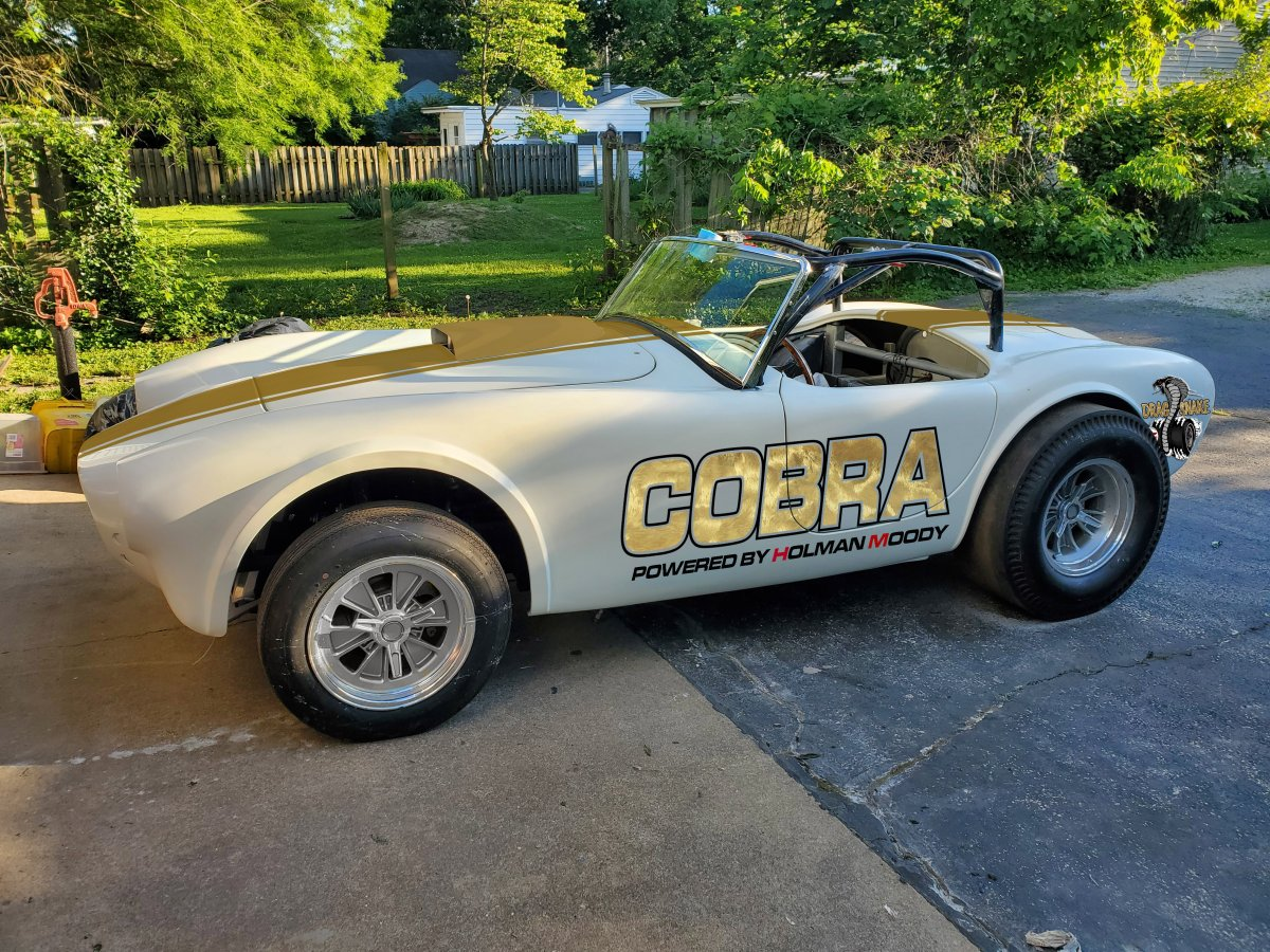 cobra plain.jpg