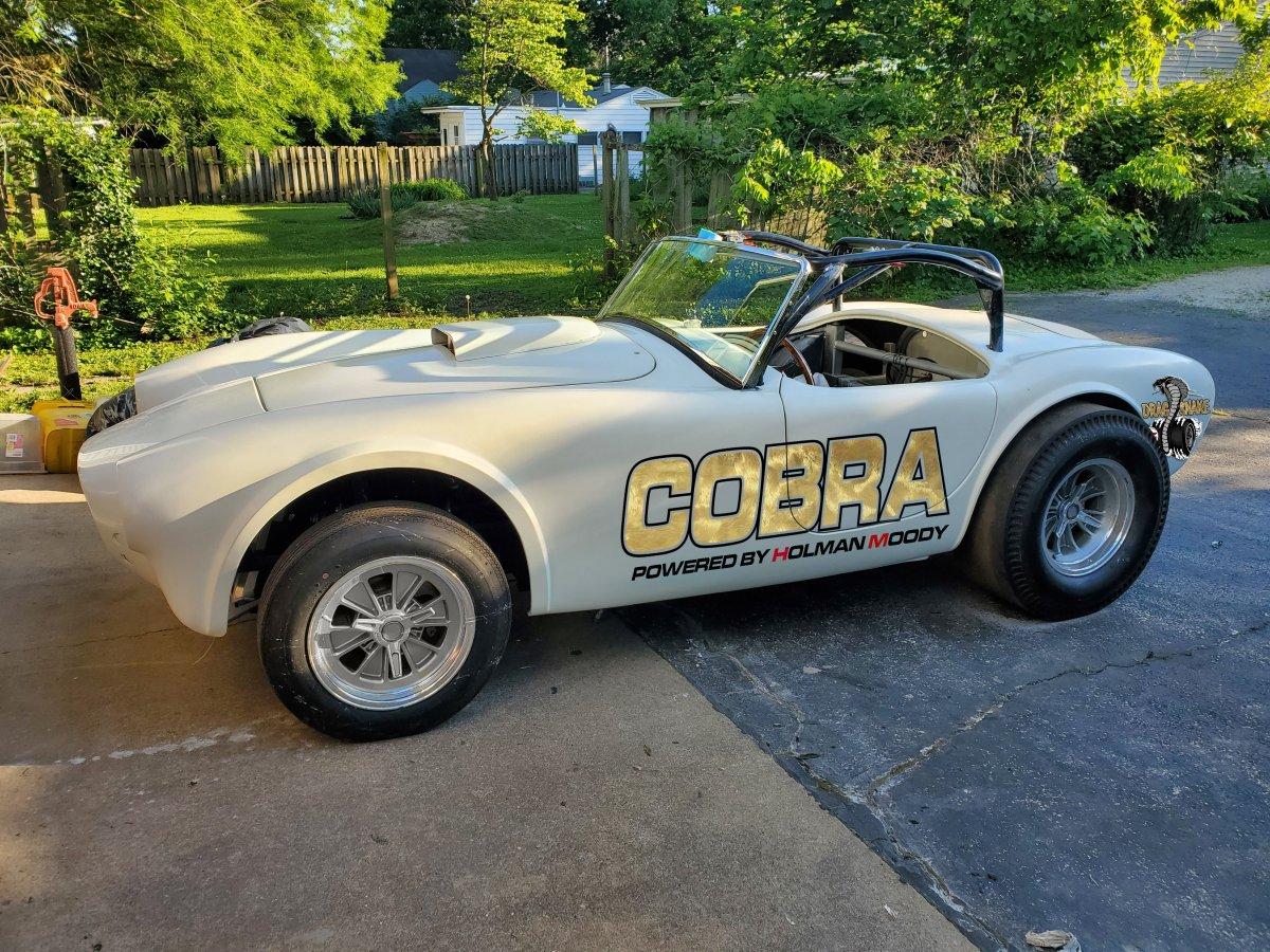 cobra very plain.jpg