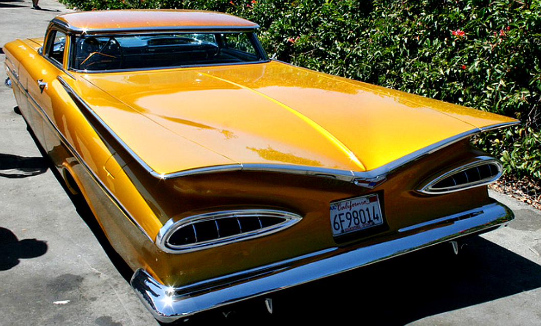 custom EL rear.png