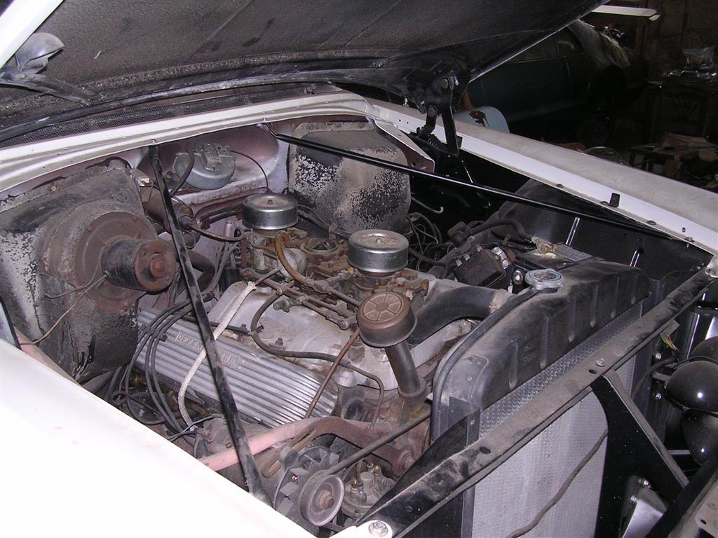 DSCN9195 (Large).JPG