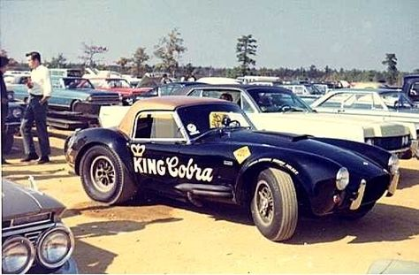 e24bda7b9111df25cd0e01fc4d71e645--king-cobra-ac-cobra.jpg
