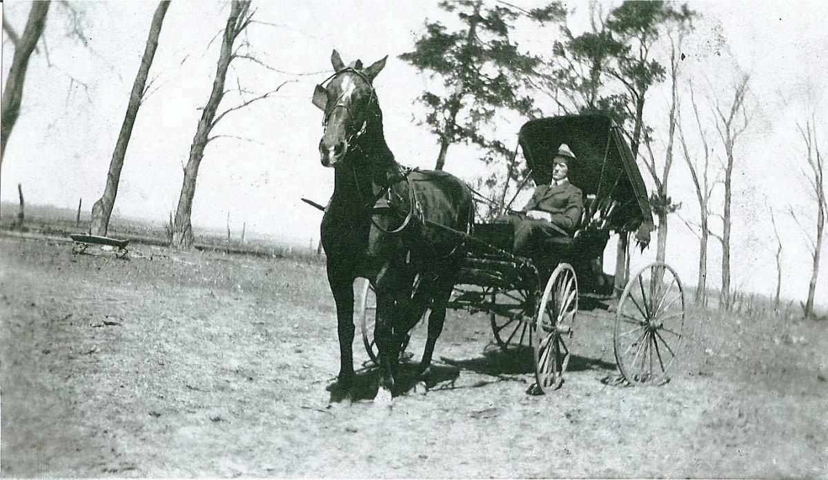 Earl Priest & his fancy driving  buggy copy.jpg
