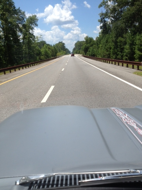 FLHRT16 US 17 South of Charleston SC.JPG