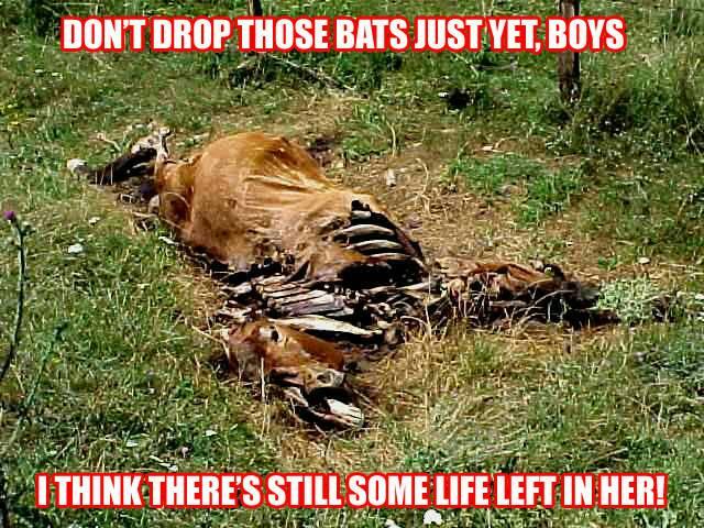 Flogging a Dead Horse.jpg