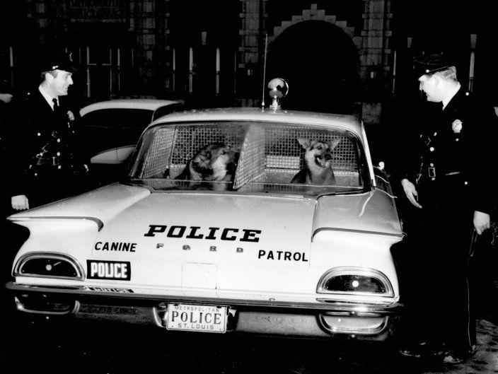 ford-police-police-cars.jpg