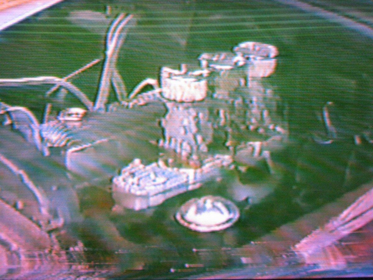 Greg Dyke 50 Chevy f 85LSS.JPG