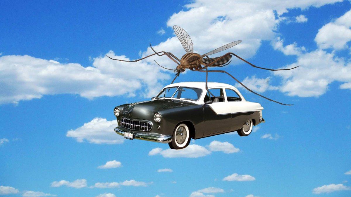 hijacked car.jpg