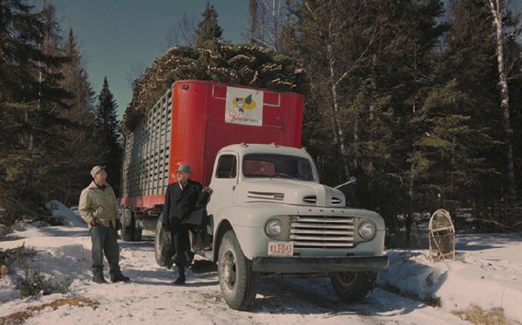 holiday Christmas car 1949 Ford F8 truck Christmas trees.jpg