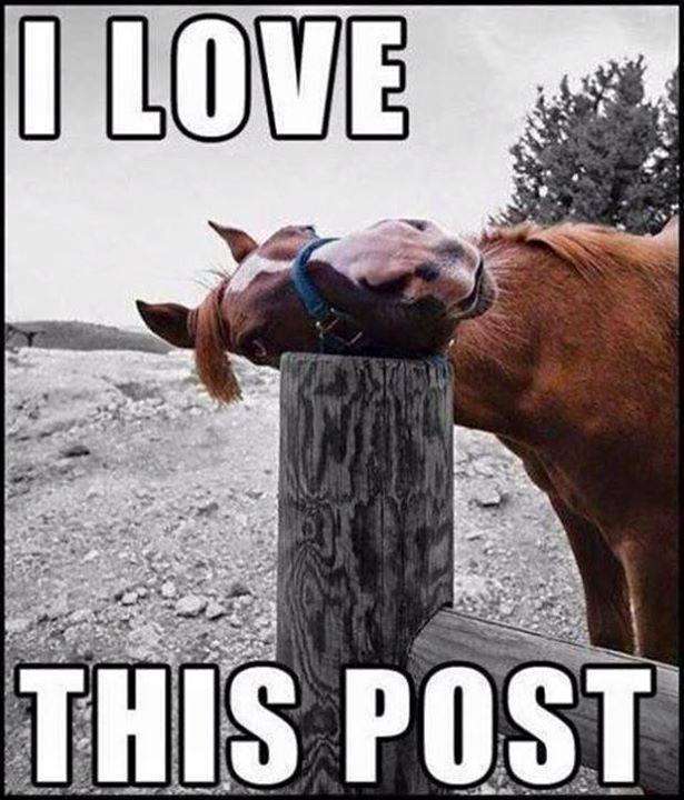Love this post.jpg