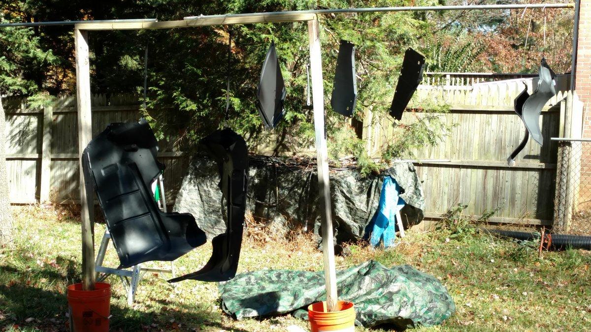 paint backyard.jpg