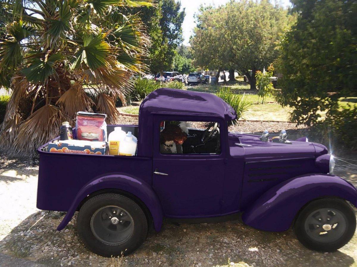 purplebantam.jpg