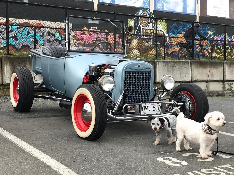 Roadster Dogs.jpg