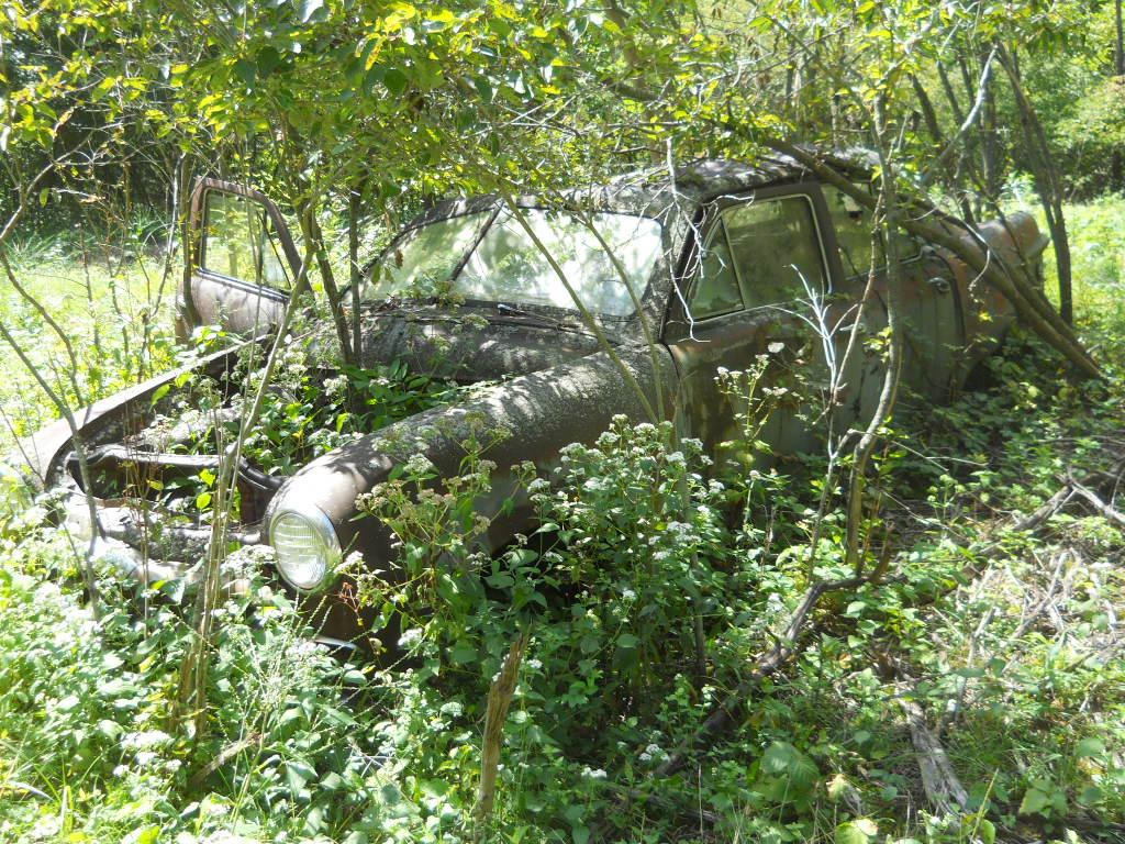 savanna farm cars 9-14 012.jpg