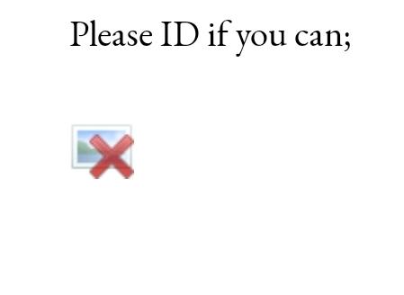 Screenshot_20200130-213320_Chrome.jpg