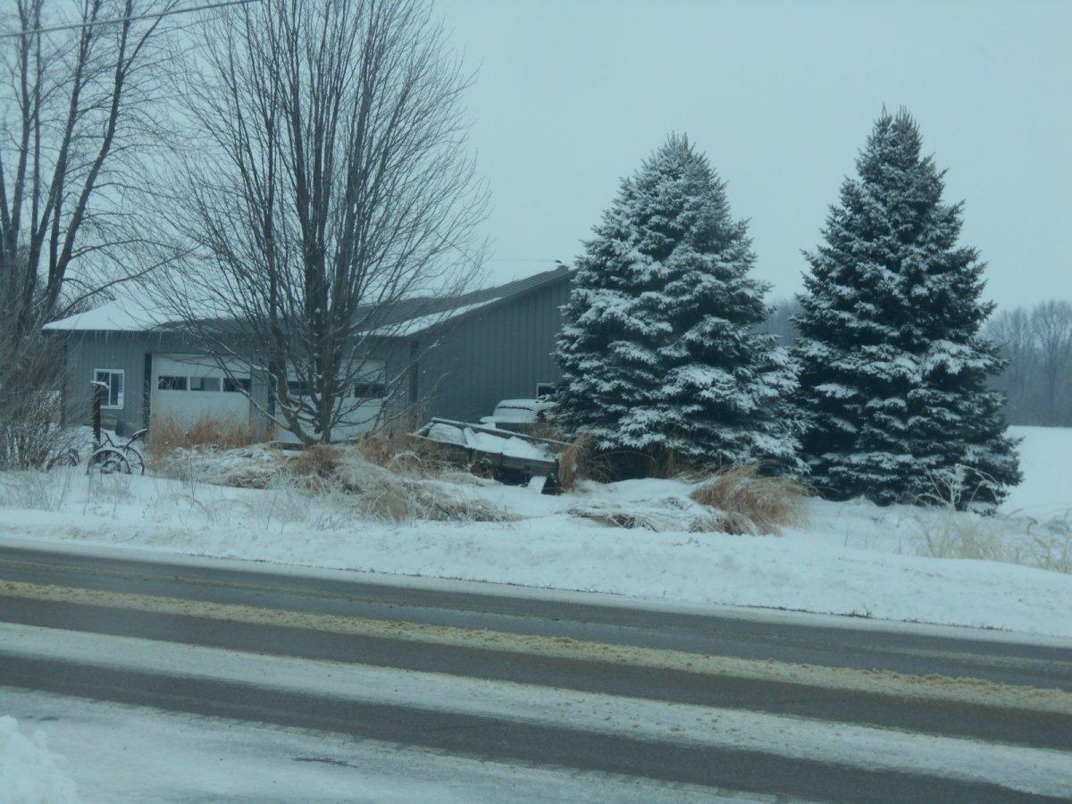 snow 1-24-19 020.jpg