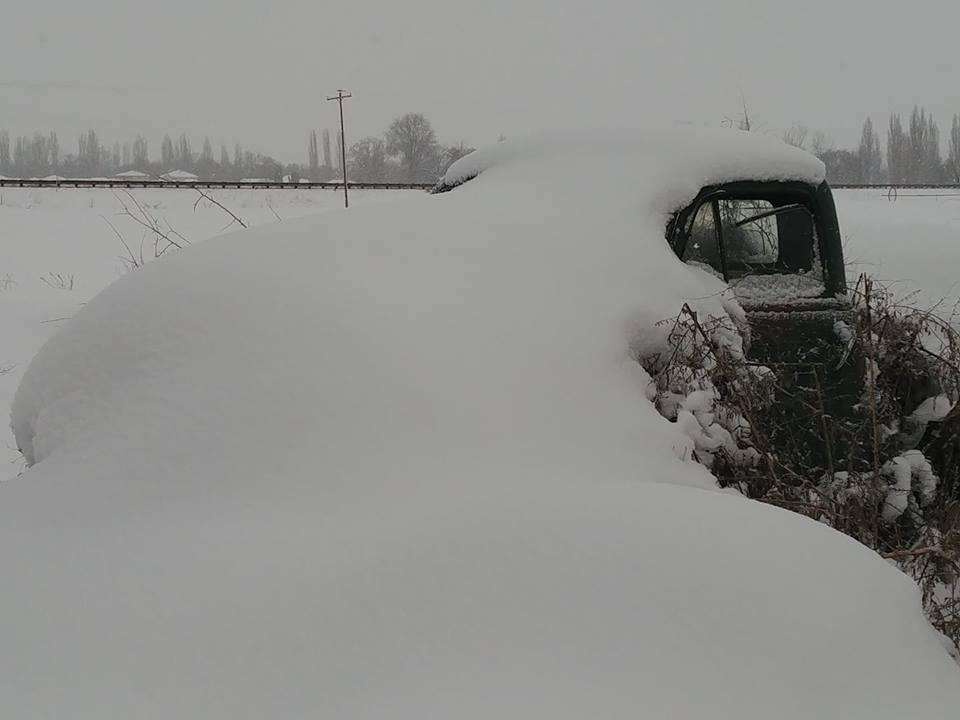 snow covered 51.jpg