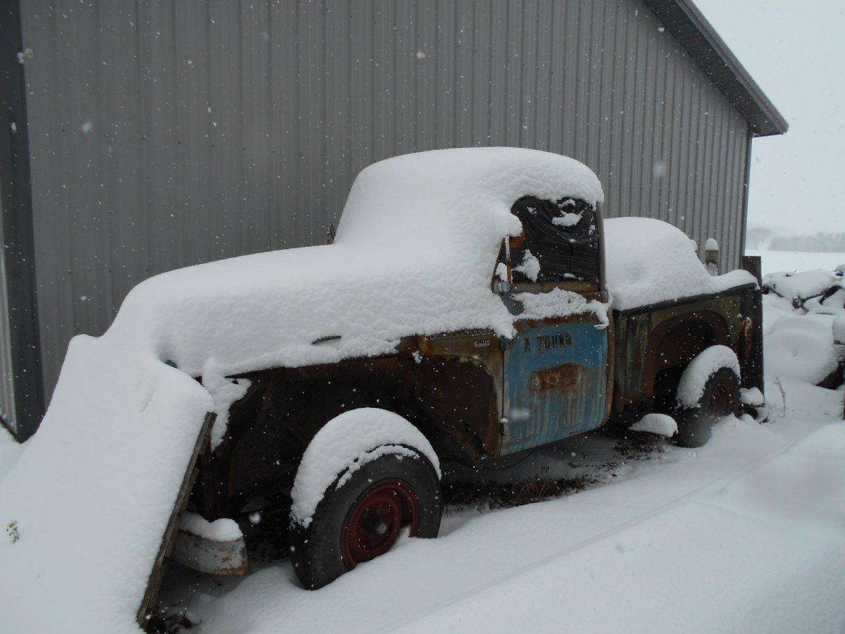 snow first 12-4-16 015.jpg