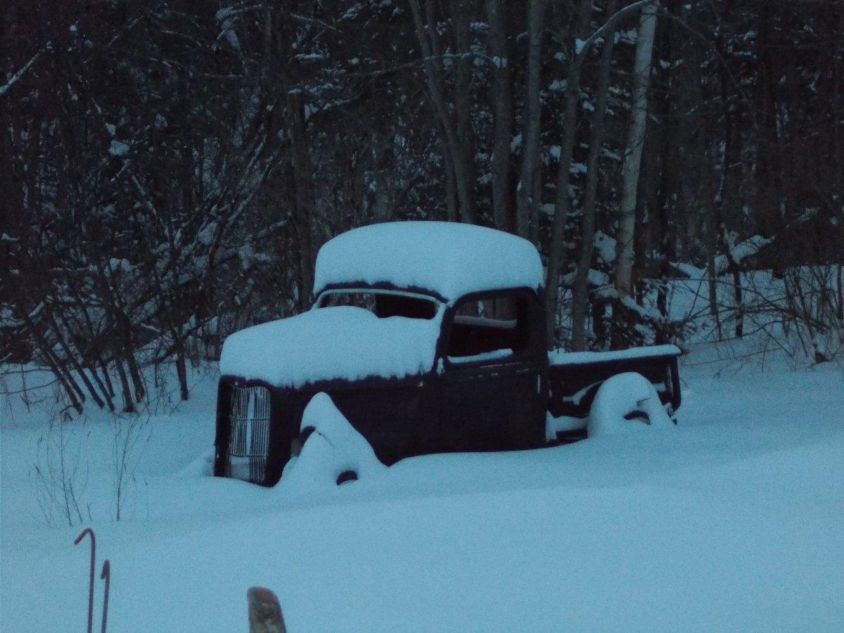 snow jo 002.JPG