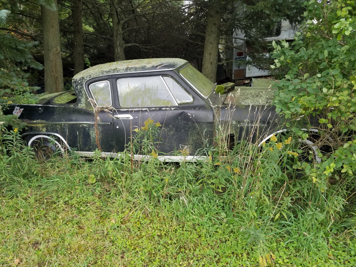 Studebaker Hawk, there's a shiny one in another barn.jpg