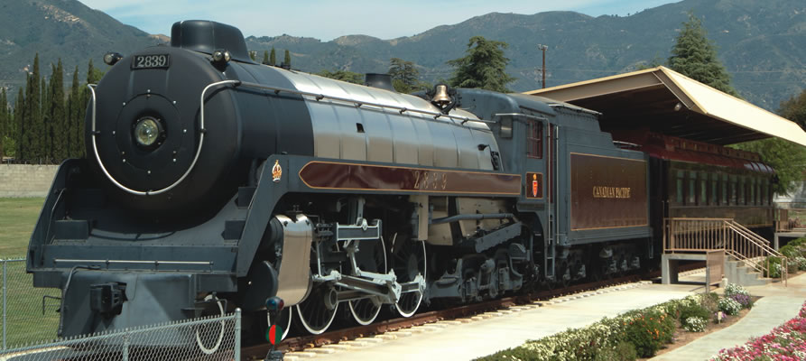 Train_l.jpg