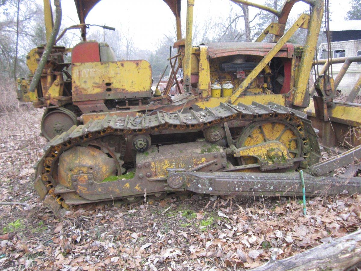 trees bulldozer 005.JPG