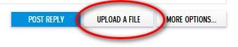 UPLOAD A FILE  box.jpg