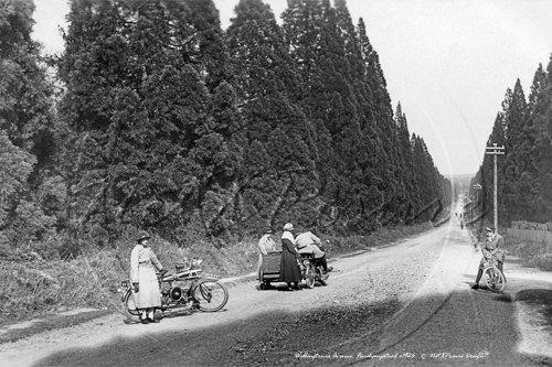 wellingtonia-avenue-1926.jpg