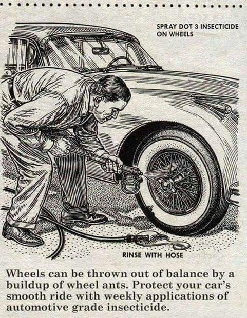 WheelAnts.jpeg