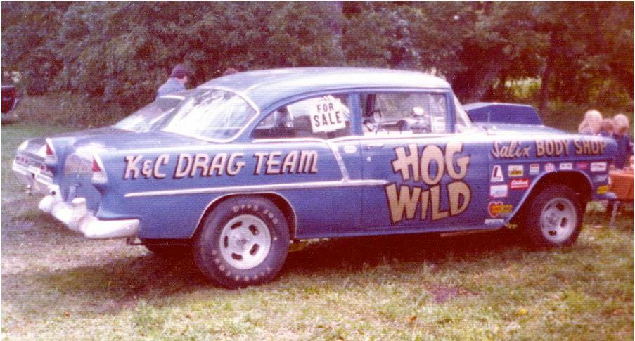 wild hog.JPG