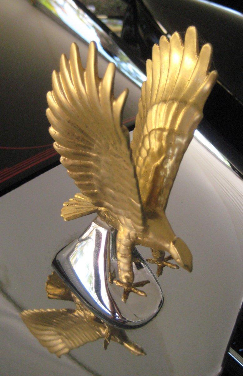 zimmer_eagle_hood-orn_1.jpg