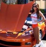 corvettes2007