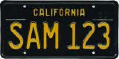 SAM123