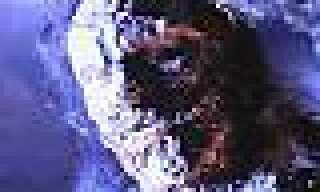 Eljefe 1587