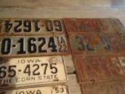 1931rat