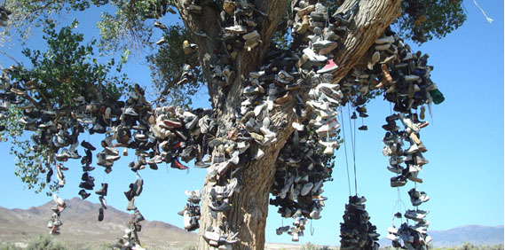 Stopping at the Shoe Tree…